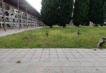La gespa del cementiri sense tallar. - FOTO: Aj Sant Fruitós