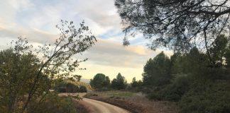 Sant Fruitós de Bages millora els camins del municipi / Fotografia: Ajuntament de Sant Fruitós